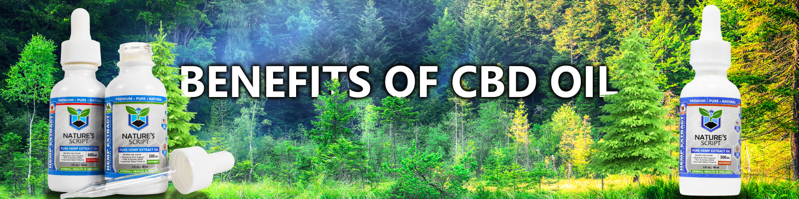 forrest of trees cbd oil benefits banner