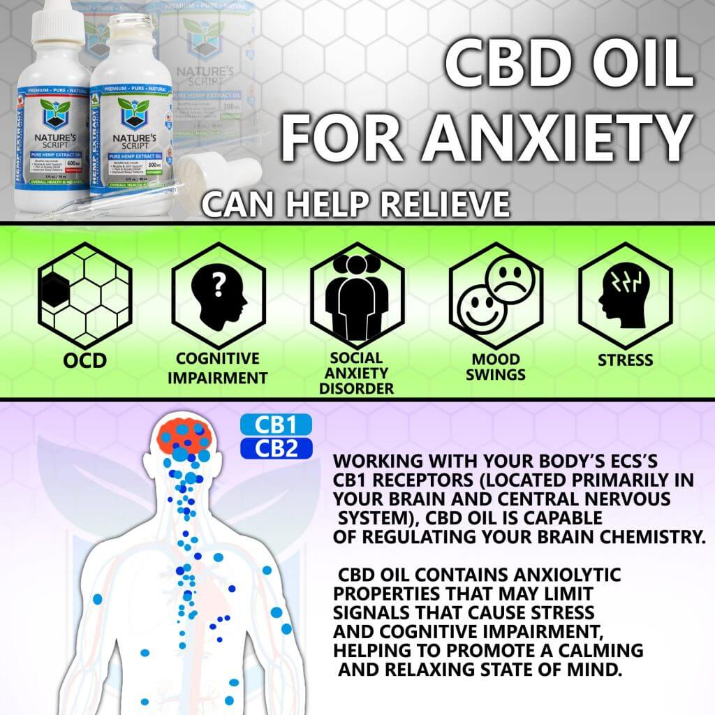 CBD oil for anxiety Endocannabinoid system nerve chart