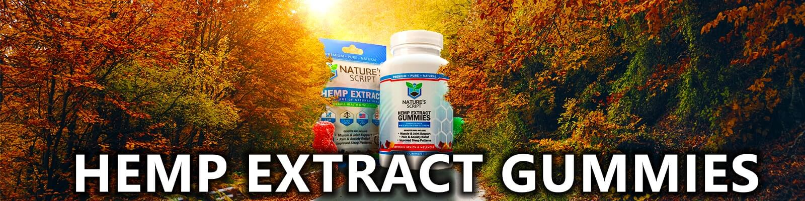 autumn forest of trees hemp extract gummies banner