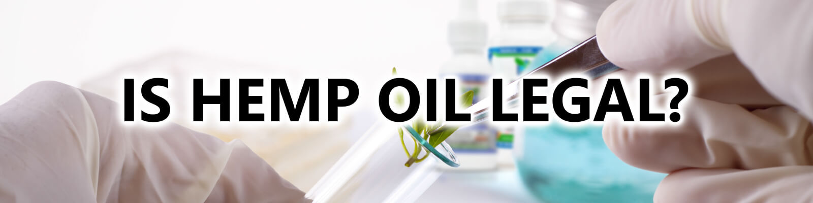 scientist putting plant into a tube is hemp oil legal