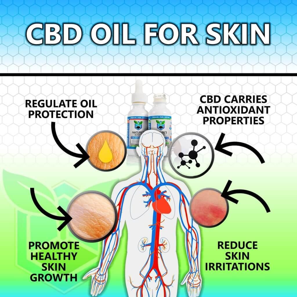 CBD Oil for skin infographic