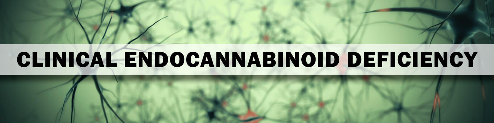 clinical endocannabinoid deficiency banner