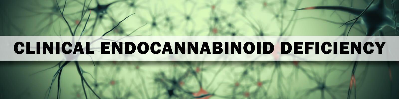 clinical endocannabinoid deficiency banner