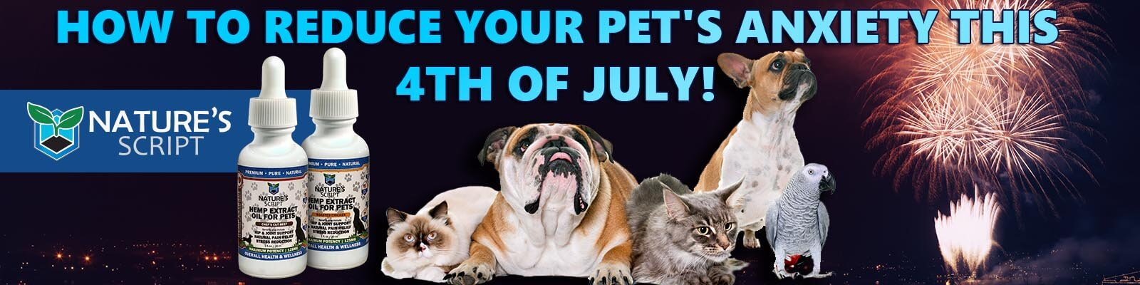 how to reduce your pets anxiety fourth of july